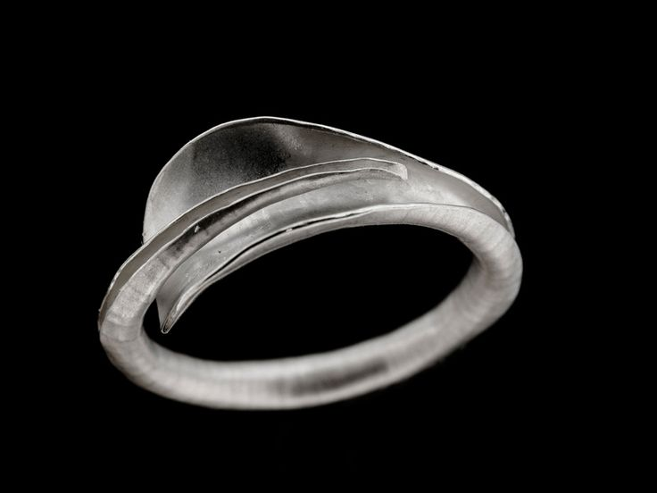 Junction Art Gallery - Anne Massey Cornucopia ring, silver £84.00 http://www.junctionartgallery.co.uk/artists/jewellery/anne-massey/cornucopia-ring