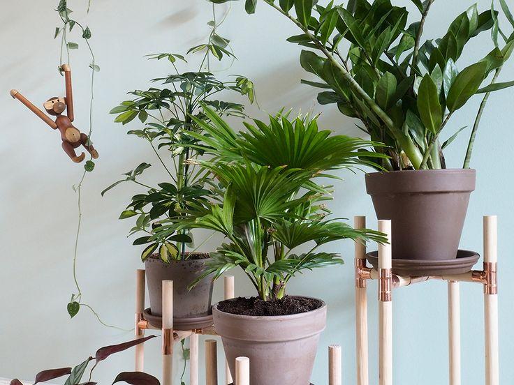 25 Melhores Ideias Sobre Fertigholzhaus No Pinterest | Die ... Modernes Gartenhaus Aus Pappelholz