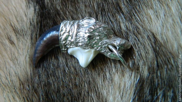 Купить КОГОТЬ ВОЛКА - серебряный, коготь, волк, амулет, амулет талисман оберег, Клык волка