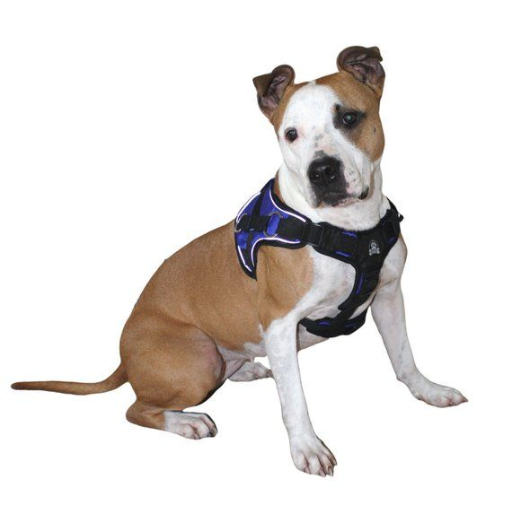 Durable No Pull Comfort Walking Working Dog Harness With Handle