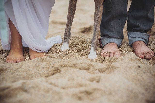 wedding photo with dog paw - Hochzeitsfoto mit HUnd von Verträumte Boho Hochzeit am Strand in Cornwall von Ali Paul | Hochzeitsblog - The Little Wedding Corner