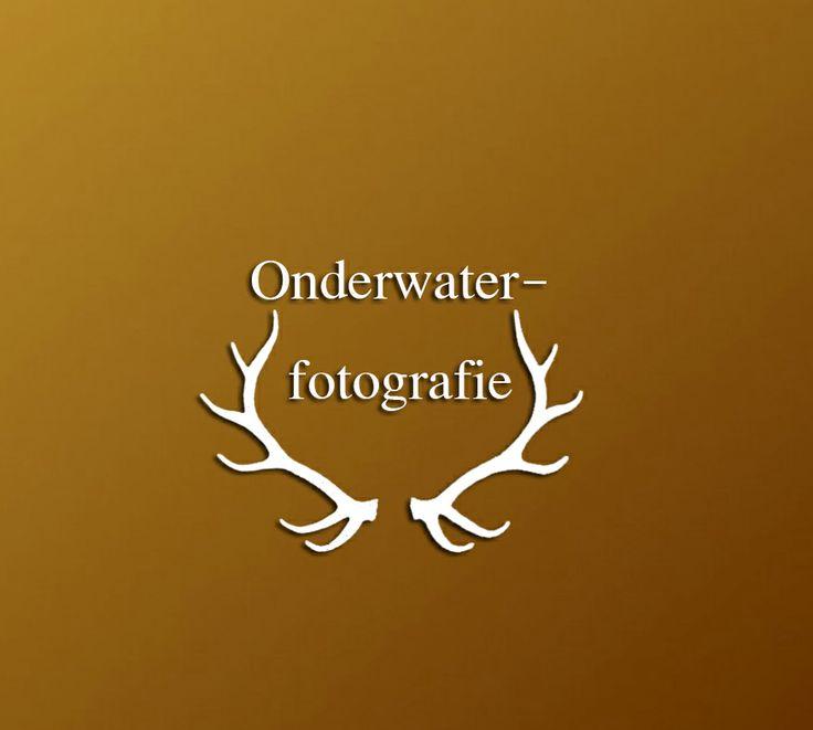 Bord: onderwaterfotografie