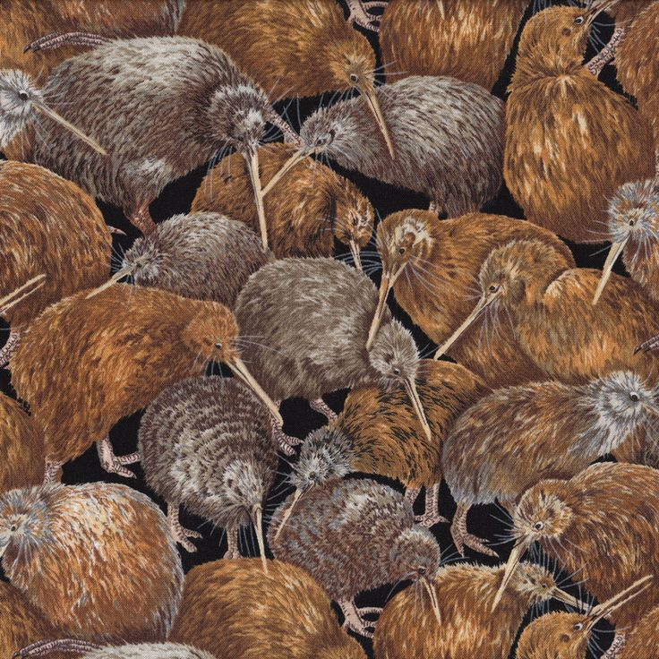 Brown Kiwi Life Like Birds New Zealand NZ Wildlife Quilt Fabric - Find a Fabric.  Available to purchase in Fat Quarters, Half Metre, 3/4 Metre, 1 Metre and so on.
