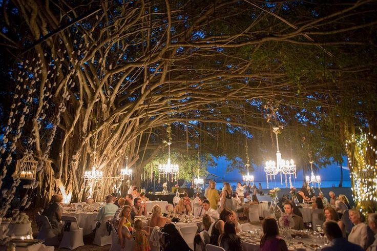 Port Douglas Events & Hire