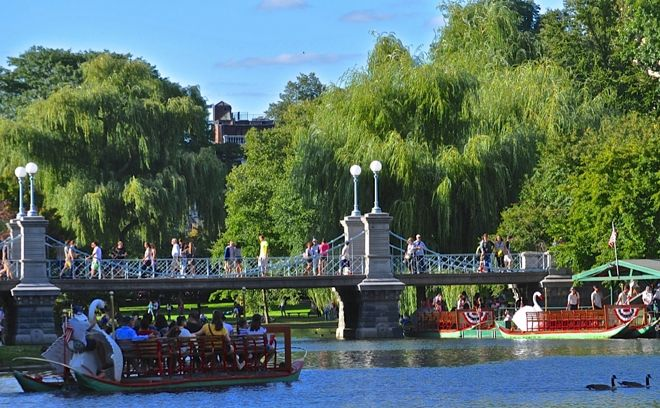 Giant swans and people out strolling. This is typical Bostonian elegance at it's best. For more reasons why you should visit, go to our travel story http://www.suitcasesandstrollers.com/interviews/view/usa-family-holidays-boston-insider?l=all #GoogleUs #suitcasesandstrollers #travel #travelwithkids #familytravel #familyholidays #familyvacations #traveltips #boston #parks #swans