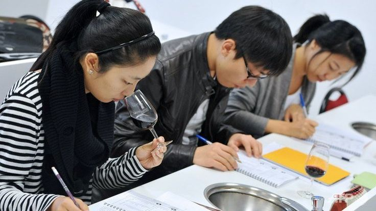 Overseas Chinese Students Attacked in France, Reactions                                      Pic: (Chinese students learning about wine.)
