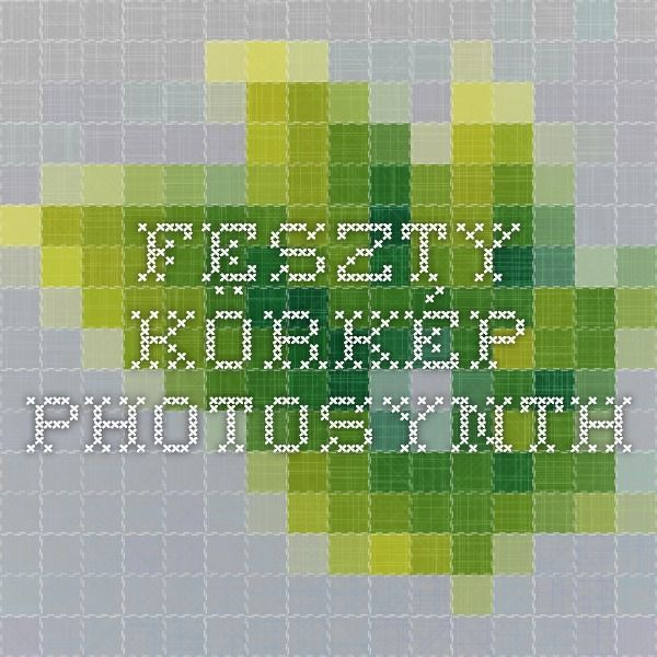 Feszty-körkép - Photosynth
