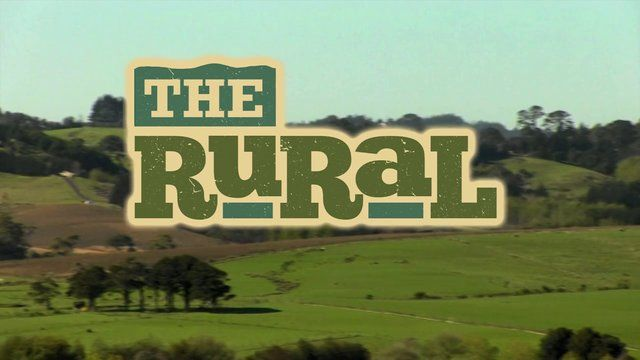 The Rural by Wolf Productions. This is our latest job for a new site launched recently - therural.co.nz. It was a tough nut to crack, because we had some fairly dry subject matter, a few myths to bust and not a lot of armoury to bust them. In the end our client set us free by ordering the destruction of the script and a bit of ad-libbing. Here's the result.