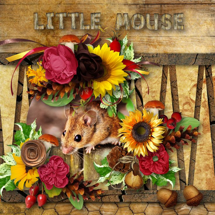 """template by Trowing Some Scraps Around - ( BT A Love For Layout Templates), http://jodisscrapping.blogspot.cz/2017/10/celebrating-love-and-digital.html,  bundle """"Little Mouse"""" by BooLand Designs, photo Pixabay"""