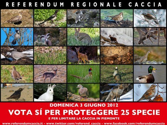 Abolito dalla Regione Piemonte il referendum sulla caccia