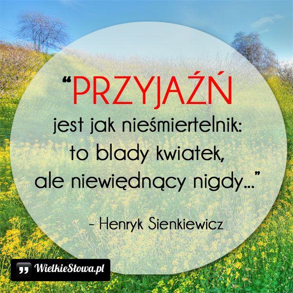 PRZYJAŹŃ jest jak nieśmiertelnik... #Sienkiewicz-Henryk,  #Przyjaźń