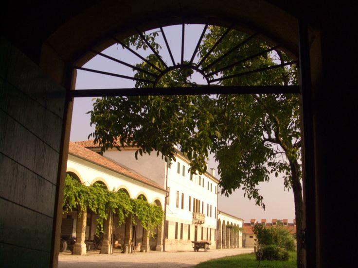 Photo Gallery | Palazzo Rosso Farm #vicenza #palladio #agriturismo