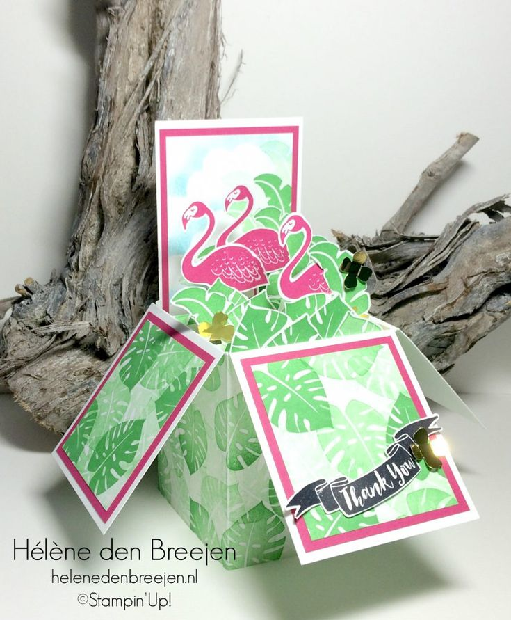 Stampin'Up! Pop of paradise box card tutorial