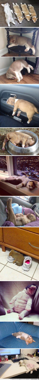 ¿Cuál es tu lugar favorito para una siestecita?