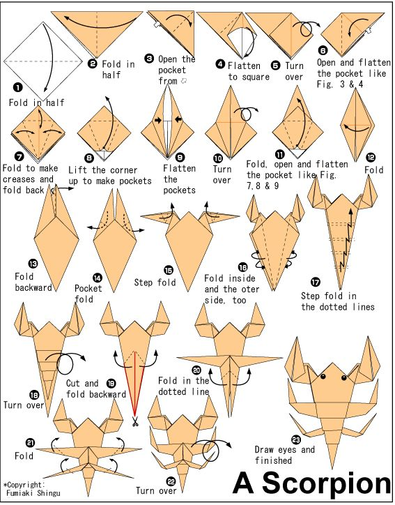 Wow Complex Origami Instructions - http://www.ikuzoorigami.com/wow-complex-origami-instructions/