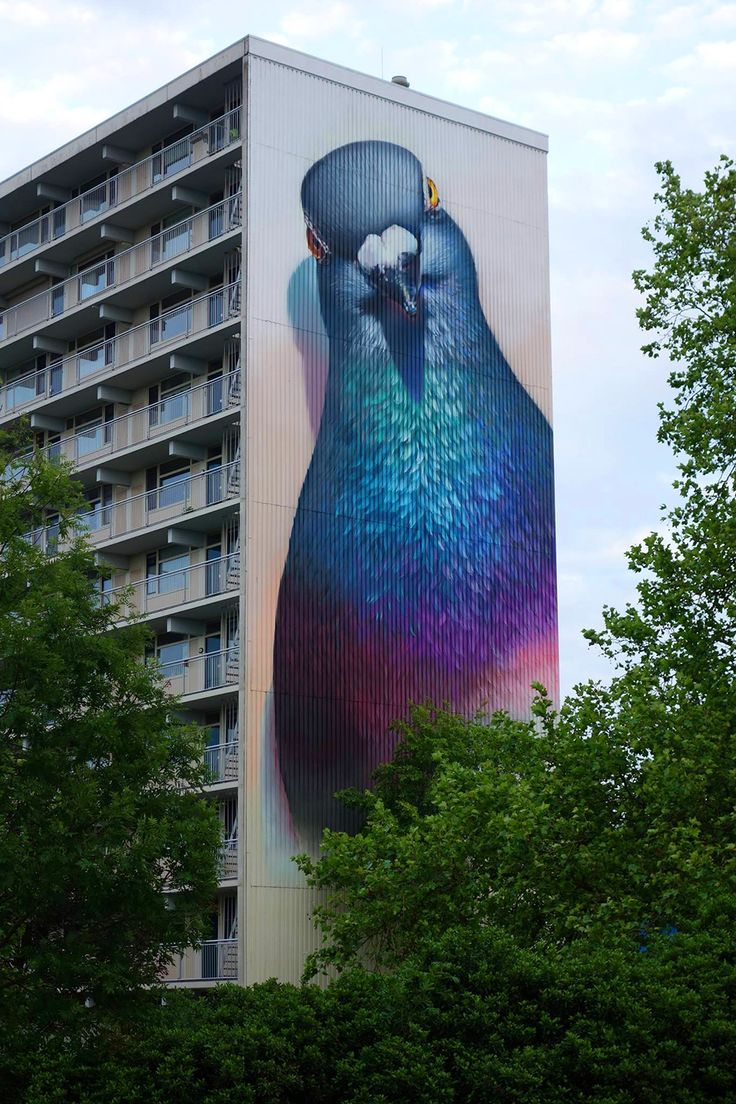 Absolutely stunning street art... I have never seen a pigeon as pretty as this but it sure is wonderful to look at!