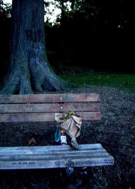 Kurt (Cobain)'s Park, Seattle