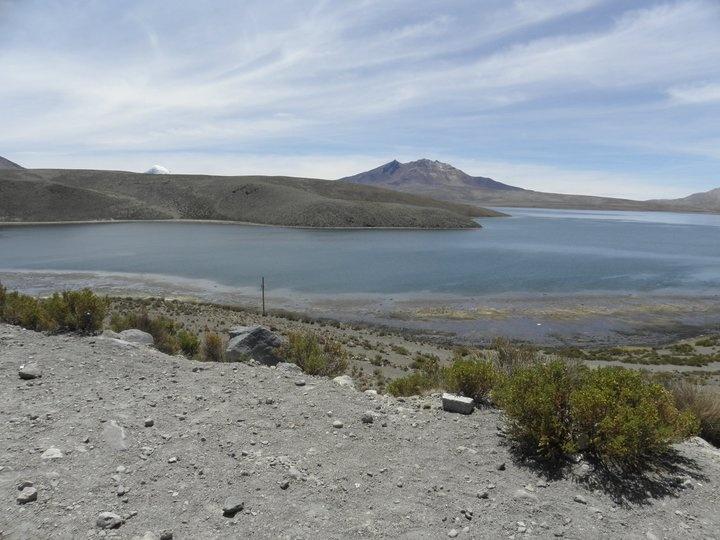 Lago Chungará. Arica. Chile. Photo: Javier Valenzuela