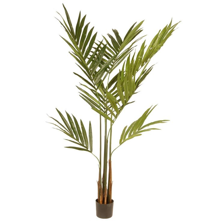Artificial Potted Kentia Palm Tree Green 6 Ft. - National Tree Company