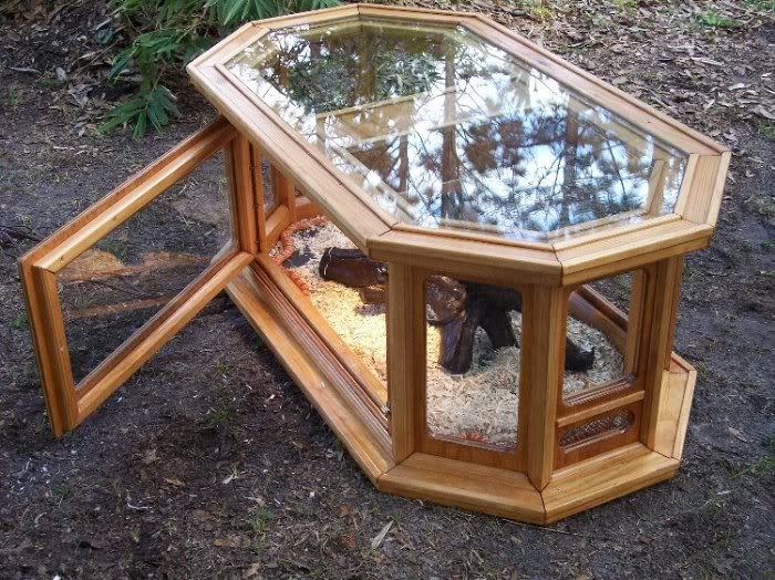 i found some custom tanks that are beautiful showcases for your reptiles! - sSNAKESs : Reptile Forum DIY from coffee table