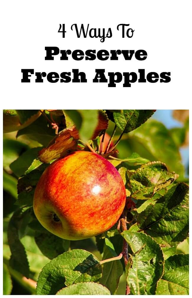 How To Preserve Apples With Images Apple Recipes Apple Apple Crisp Recipes
