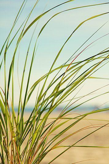 beach art // beach canvas // large beach by SeptemberWren on Etsy