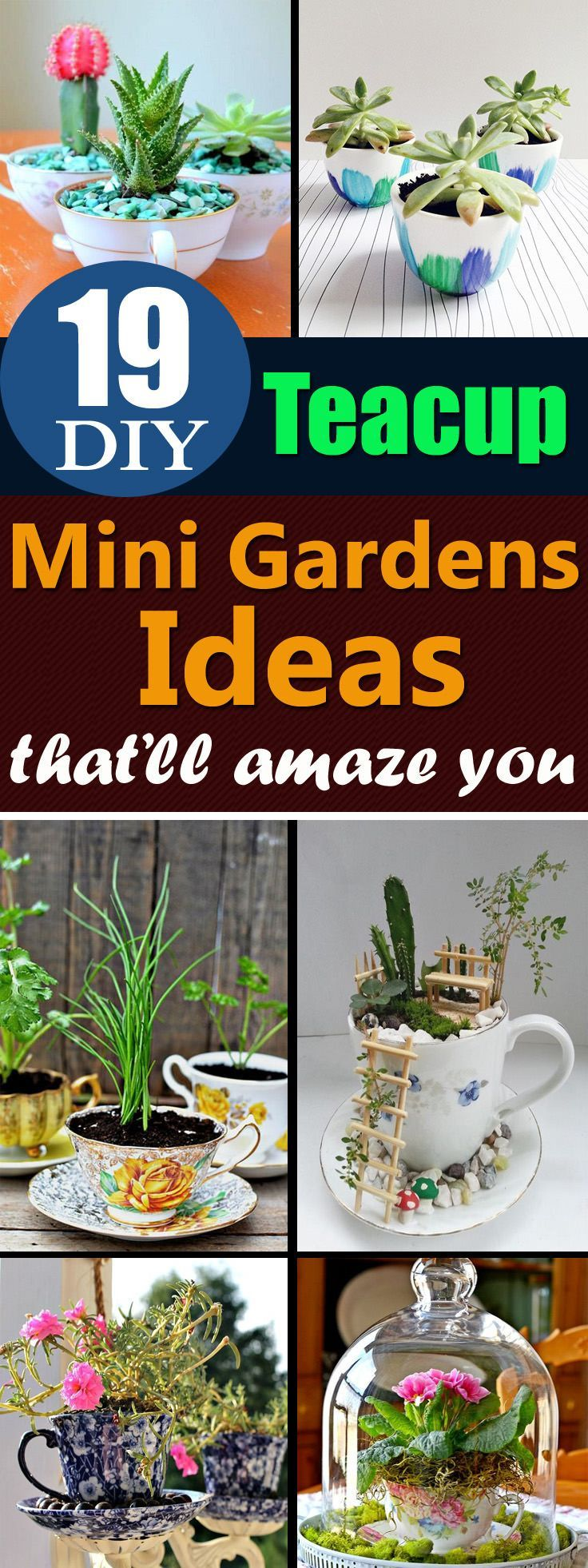 Give a second life to the unused teacups that you've with these DIY Teacup Garden Ideas! #indoorgardening