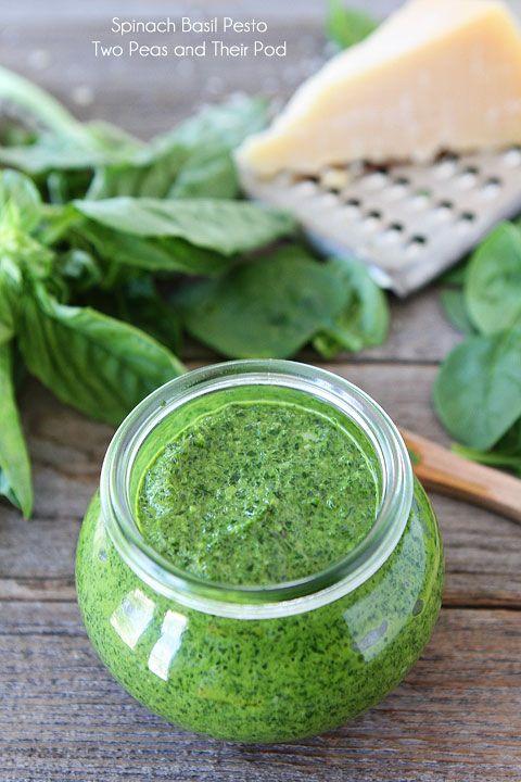 Spinach Basil Pesto Recipe on twopeasandtheirpod.com