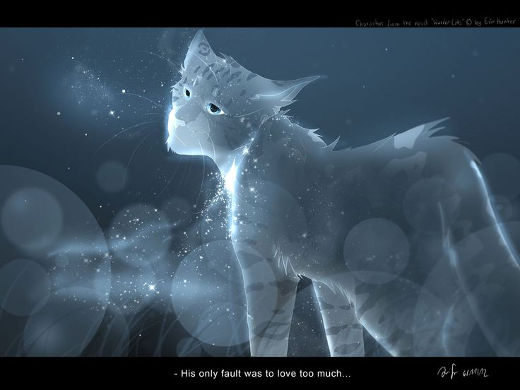 FUN FACTS 13: StarClan was divided in opinions when it came for the judging of whether Ashfur would get into StarClan or not. He just barely made it, and he often gets dirty looks from other StarClan cats.