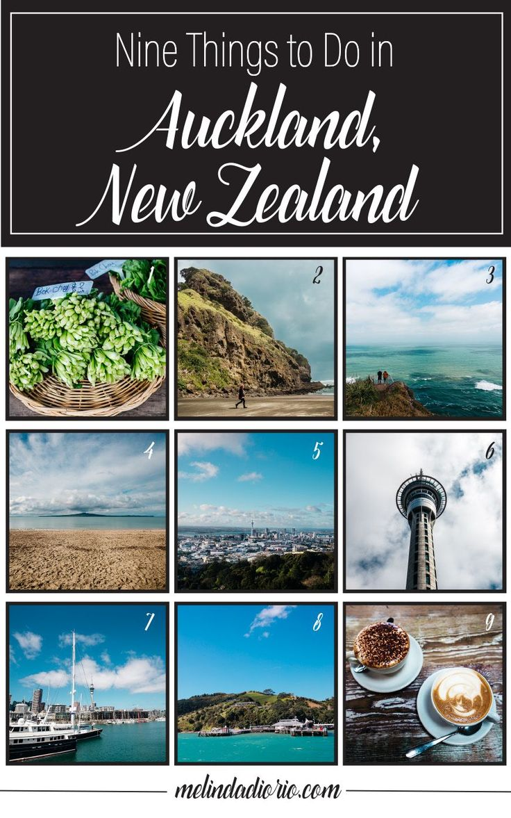 9 things to do in auckland new zealand-Pinterest