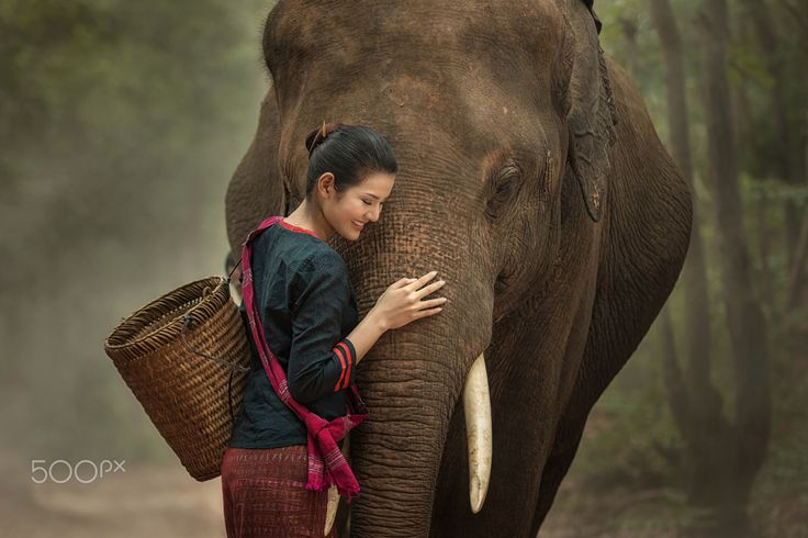 Friendship - Relationship with elephant.