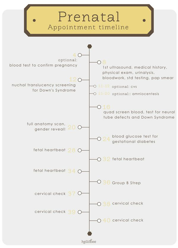 Prenatal Appointment Timeline. This would have been handy