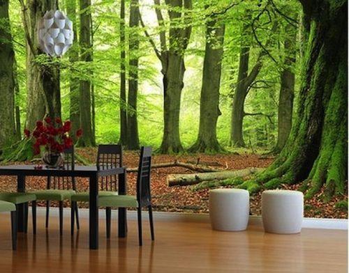 natuur-fotobehang.jpg 500×392 pixels