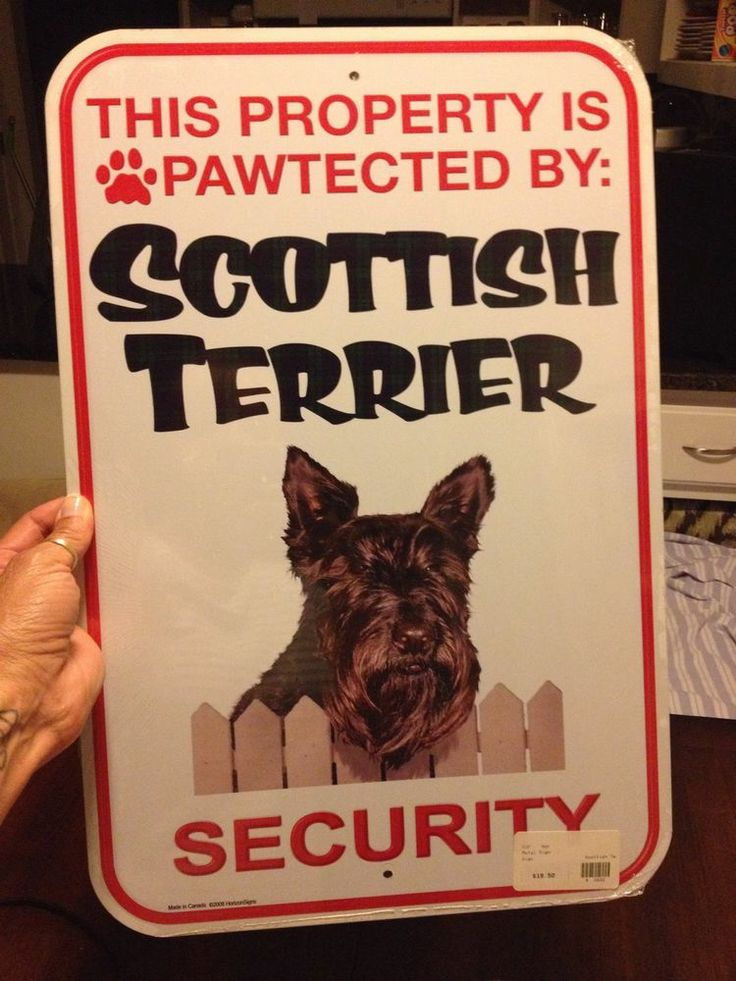 Aluminum Metal Breed Pawtected Property Sign - Scottish Terrier