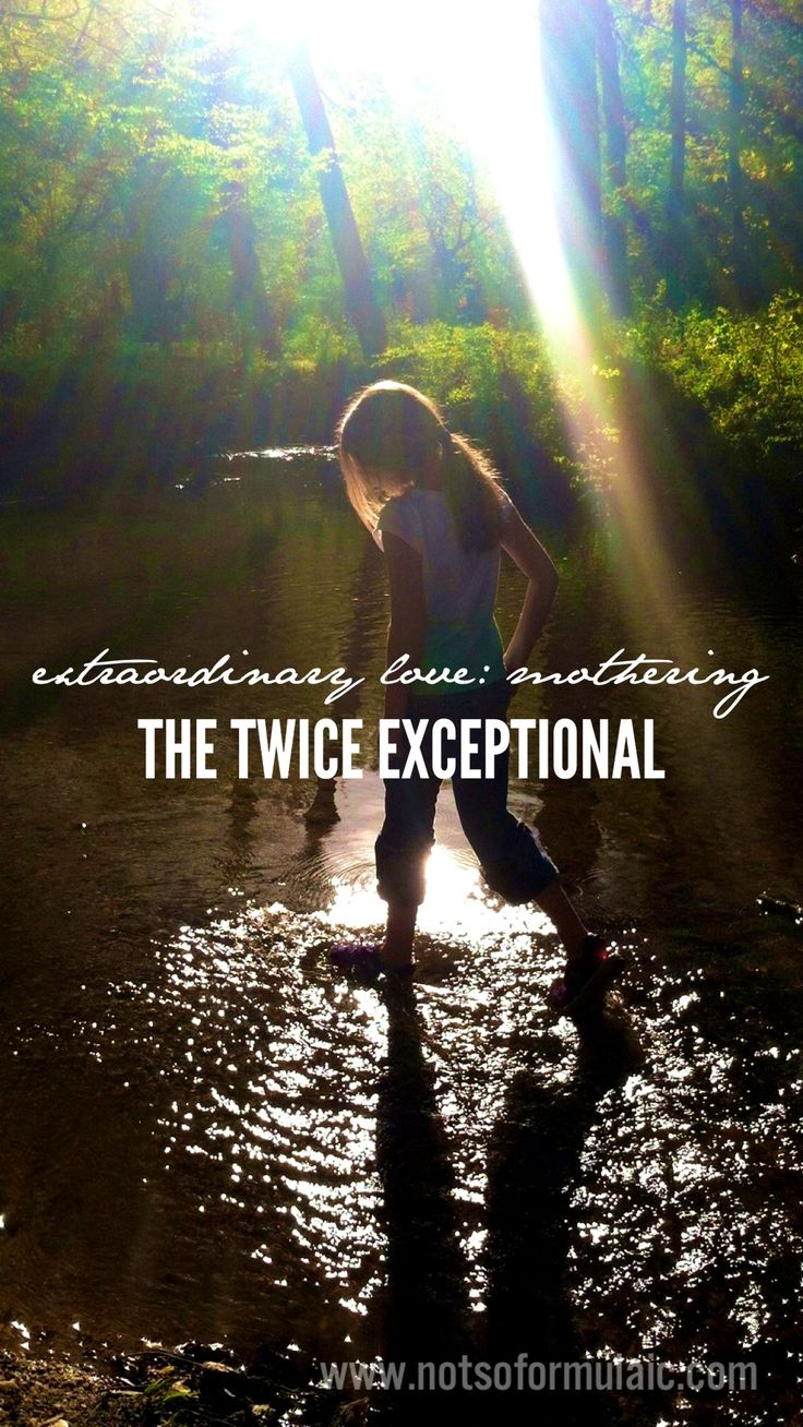 Extraordinary Love: What I've Learned as a the Mother of a Twice Exceptional Child