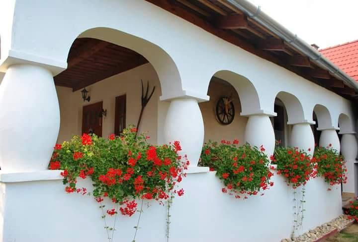 Parasztházak - Somogyi tornácos ház - Dunántúl