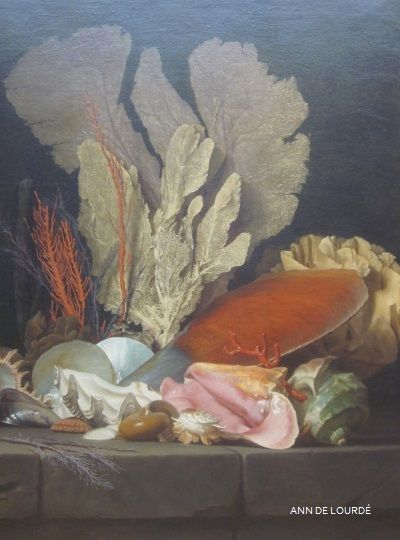 Still Life with Seashells and Coral by Anne Vallayer-Coster 1769, Summer 2012, Musée du Louvre, Paris, France.