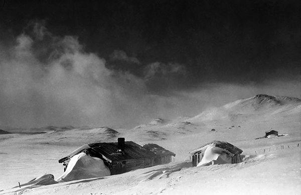 Nr. 37. Reine, 1945. Utlånt av Hermund Dokk