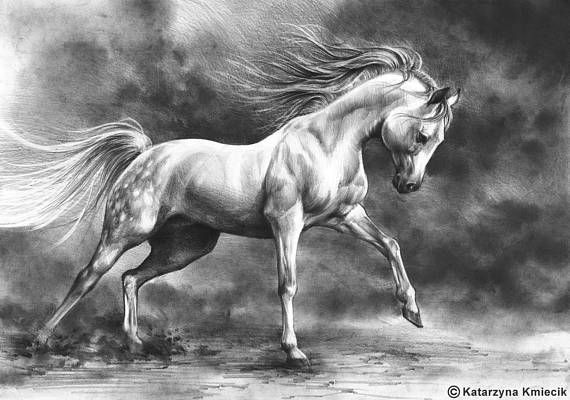 Running Horse Original Drawing Equine Art Birthday Gift Nursery