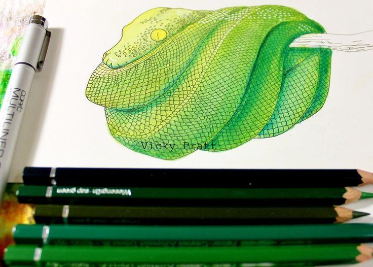 By Vicky Pratt. Water colour pencils and copic fine liner. For Inktober 2015. www.vicpratt.wix.com/vickypratt Find me on FB and IG Vicky Pratt - Illustrator.