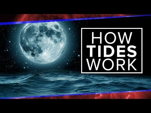 What Physics Teachers Get Wrong About Tides! Everything you've learned about tides is WRONG. We know that gravity affects the motion of all objects equally - so why are oceans the only bodies of water with tides? Join Gabe on this week's episode of PBS Space Time as he sets the record straight on tidal force, gravitational differential and what role the moon actually plays in tides. Why don't lakes have tides? Watch the episode to find out!
