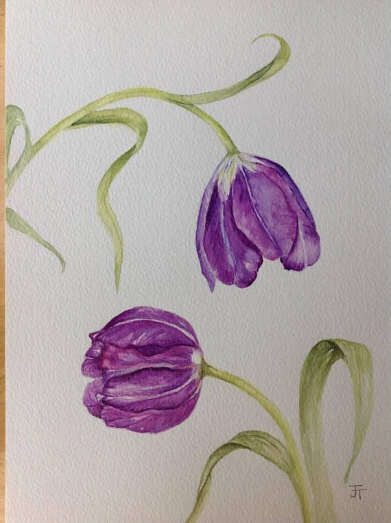 Original Watercolour Painting Purple Tulips Watercolor Flowers