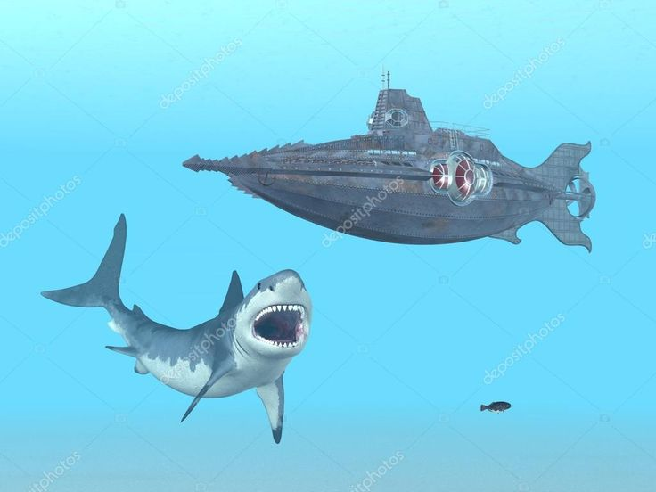depositphotos_62984389-stock-photo-great-white-shark-and-fantasy.jpg (1024×768)