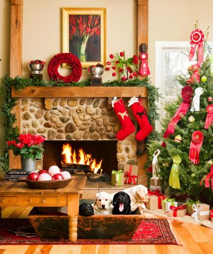 Pet Friendly Home Decor: 166 Best Images About Holiday Decorating Ideas On