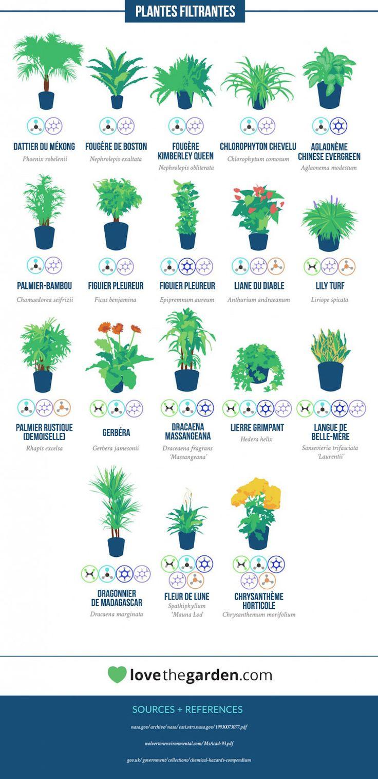 Si les plantes vertes sont le plus souvent décoratives, elles ont aussi une fonction purifiante bien utile de l'air ambiant. En effet, certaines plantes sont en mesure d'absorber des substances toxiques bien spécifiques qui se cachent dans l'air que nous respirons au quotidien. Et c'est une étude de la NASA datant de la fin des années 80 qui l'affirme et revient au gout du jour à travers les considérations écologiques actuelles. Quand la NASA se met à la botanique  Si lorsqu'on évoq...