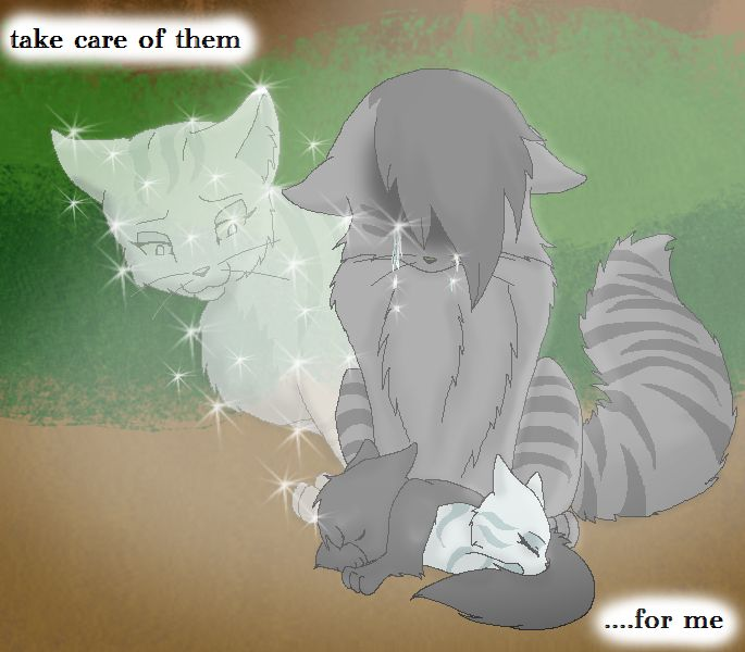 I have now read this book 5 times. the first time I was sad. the second time I had to stop reading for a second. the third time, I felt Silverstream's pain, and the fourth time, I realized exactly how hard it was for Graystripe. the fifth time, I cried for ten minutes in my room. you just get more attached to the characters as you go on.