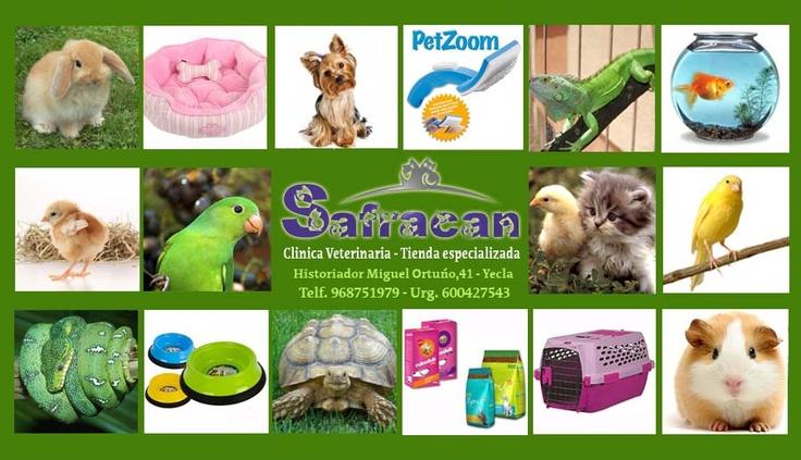 Tenemos nuevo patrocinador !!!! Safracan, en c/Historiador Miguel Ortuño, 41 ,Tu clínica veterinaria en yecla, cuidamos de tus mascotas y tenemos servicio de urgencia !!!