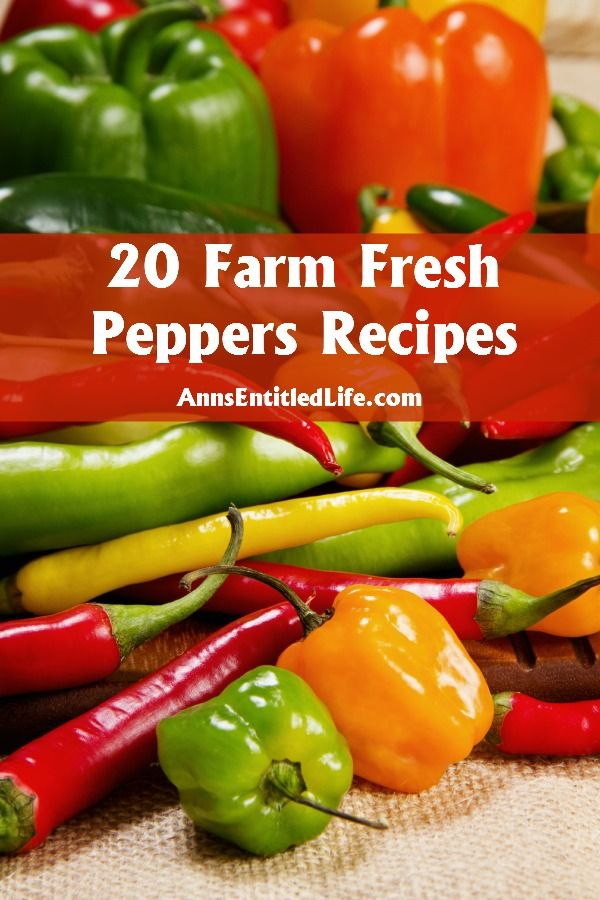 20 Farm Fresh Peppers Recipes;  In Season Peppers! Nothing is better than the fresh, crunchy, sweet or spicy taste of farm fresh peppers. Whether you are looking for a jalapeno, habanero, poblano or bell pepper recipe, the 20 fresh, in-season pepper recipes below are a healthy, and versatile, way to enhance your next meal. http://www.annsentitledlife.com/recipes/20-farm-fresh-peppers-recipes/