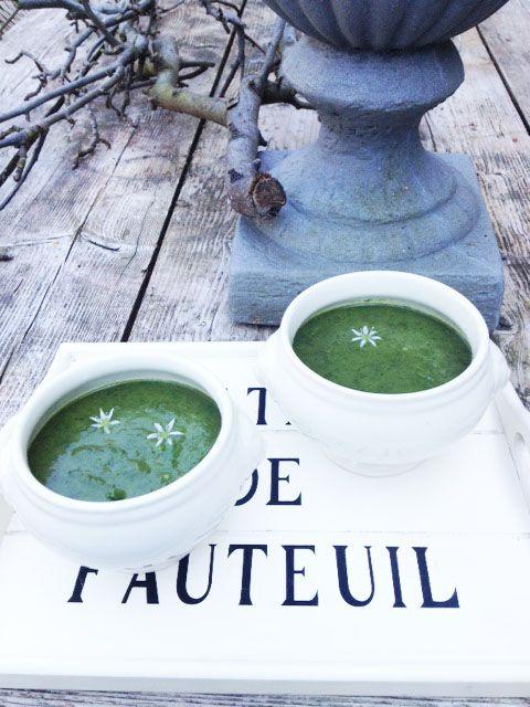 Spinaziesoep met daslook. Met wat prei, spinazie en een bosje daslook maak je een heerlijke en gezonde, groene soep. Decoreer hem met wat daslookbloemen