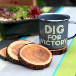 Tutorial on how to turn fallen branches into gorgeous natural coasters.